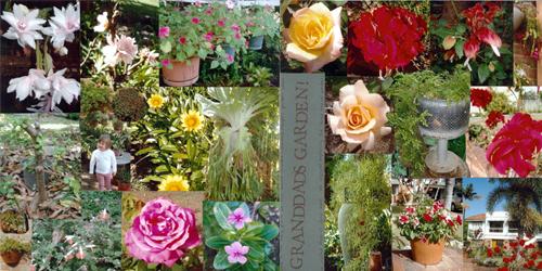 Sue madex granddads garden double