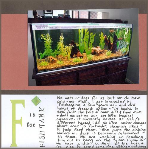 F ish for fish tank