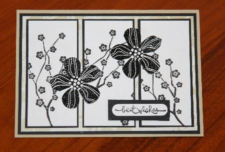 Sue card 1