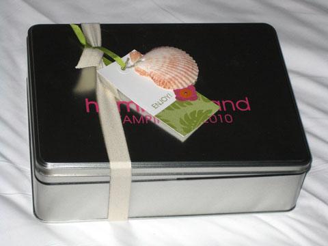 Pillow-gift-2