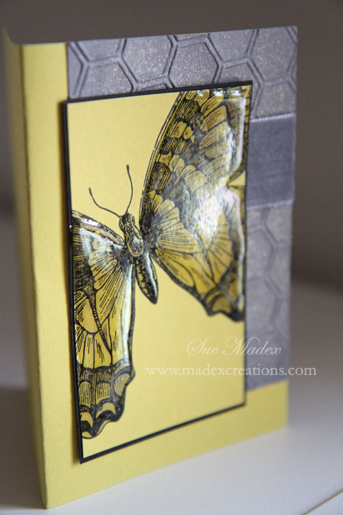 Butterfly-card-1
