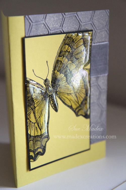 Butterfly-card-1