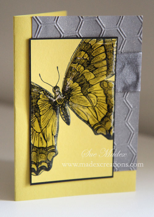 Butterfly-card-2
