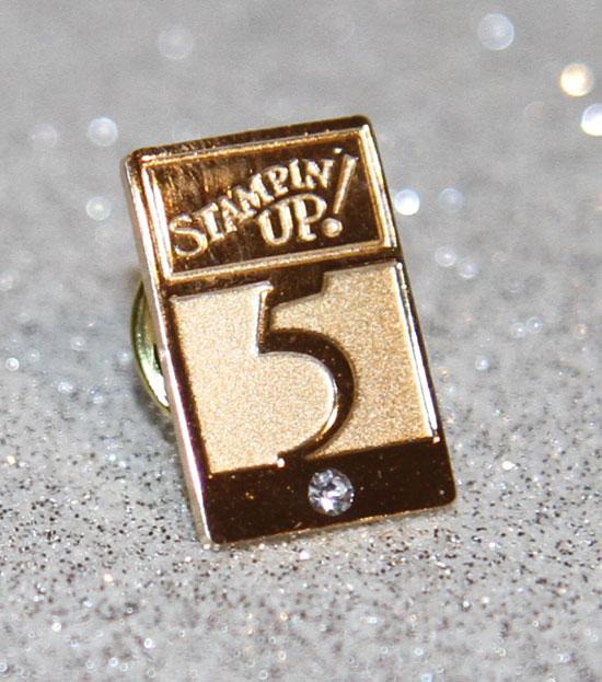 5-year-pin
