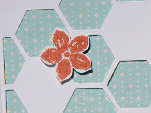 Hexagon-hive-white-3