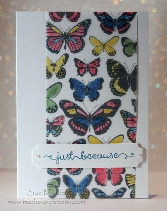 Butterfly-vellum-colour-card