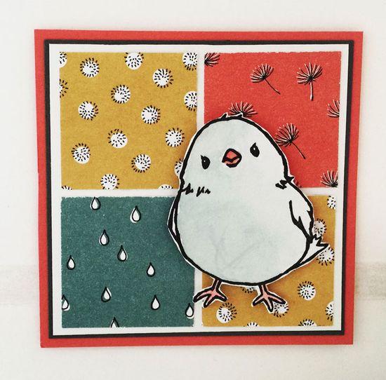 Birdy-2