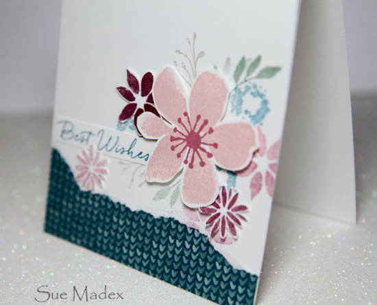 Card-sue-madex-2