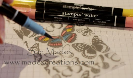 Butterfly-vellum-colour