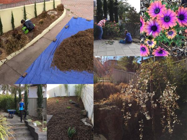 Collage-garden