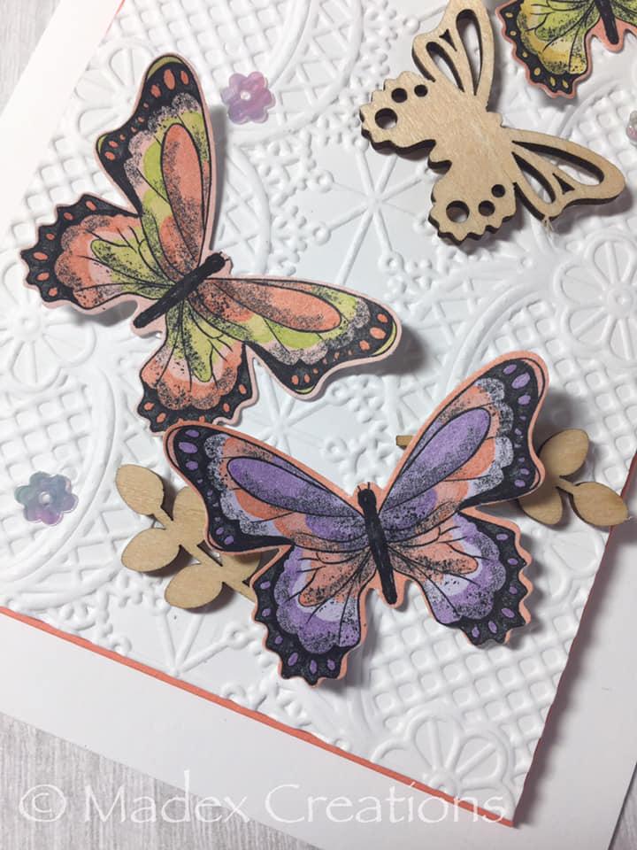 Buttterflies 2