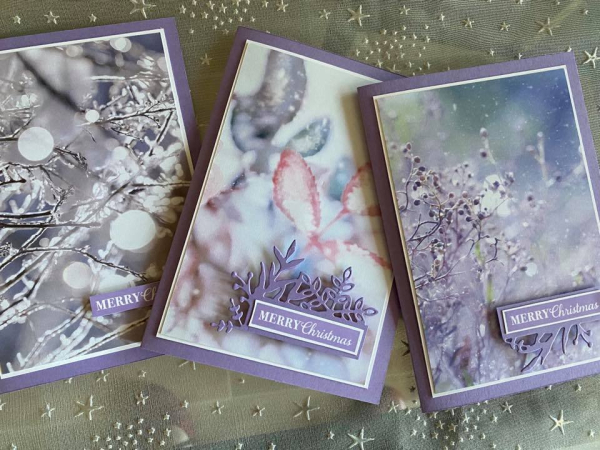 First frost cards
