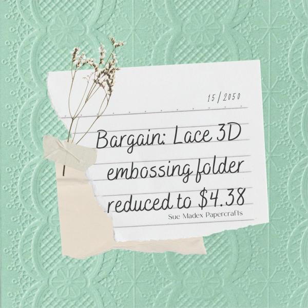 Lace 3d embossing folder retiring